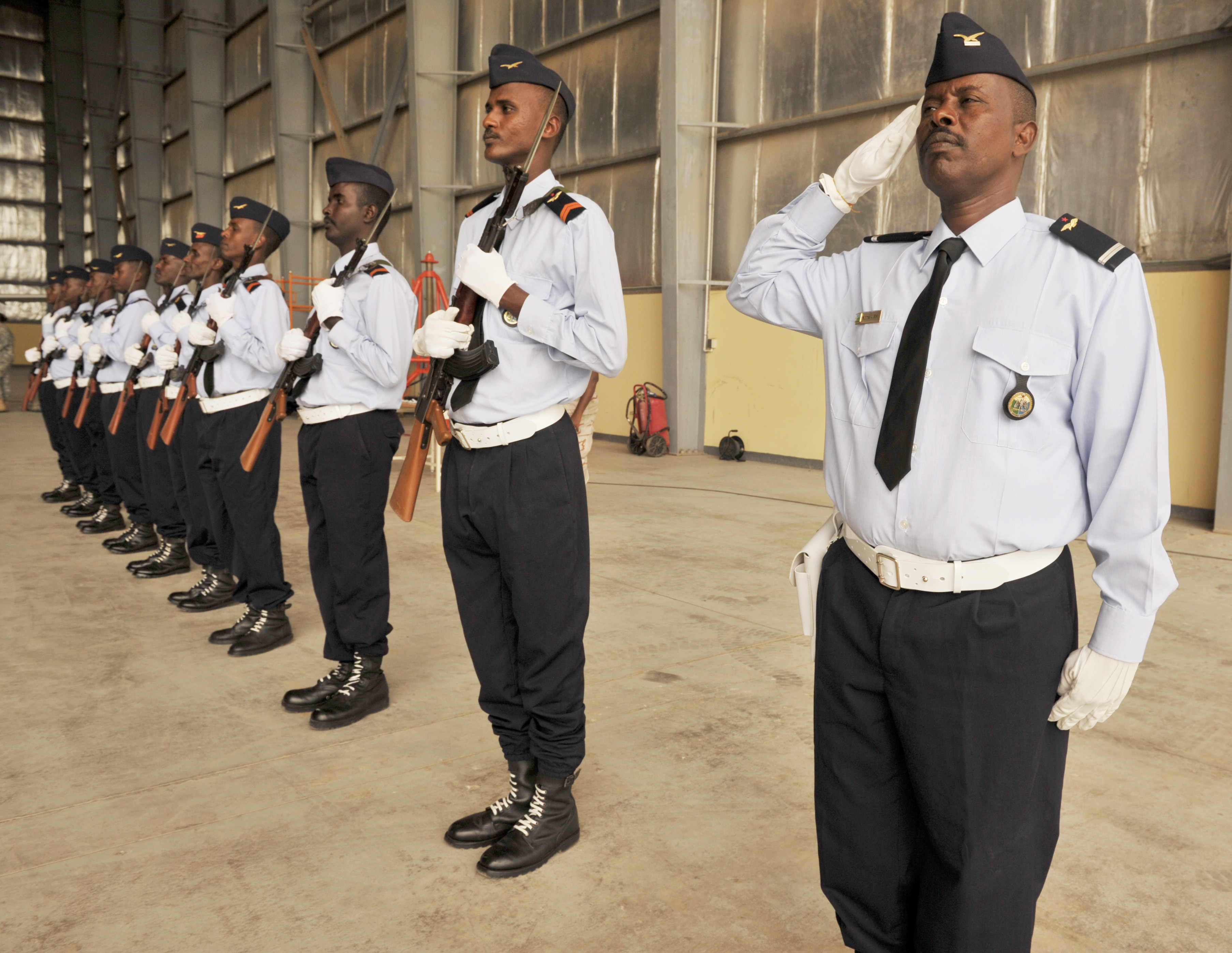 Members of the Djibouti air force honor guard render a salute during the closing ceremony for African Partnership Flight–Djibouti at Djibouti Air Base, Feb. 9, 2015. APF is the premiere program to bring together partner nations to increase cooperation and interoperability, which fosters stability and security throughout the continent. (U.S. Air Force Photo by Tech. Sgt. Ian Dean)