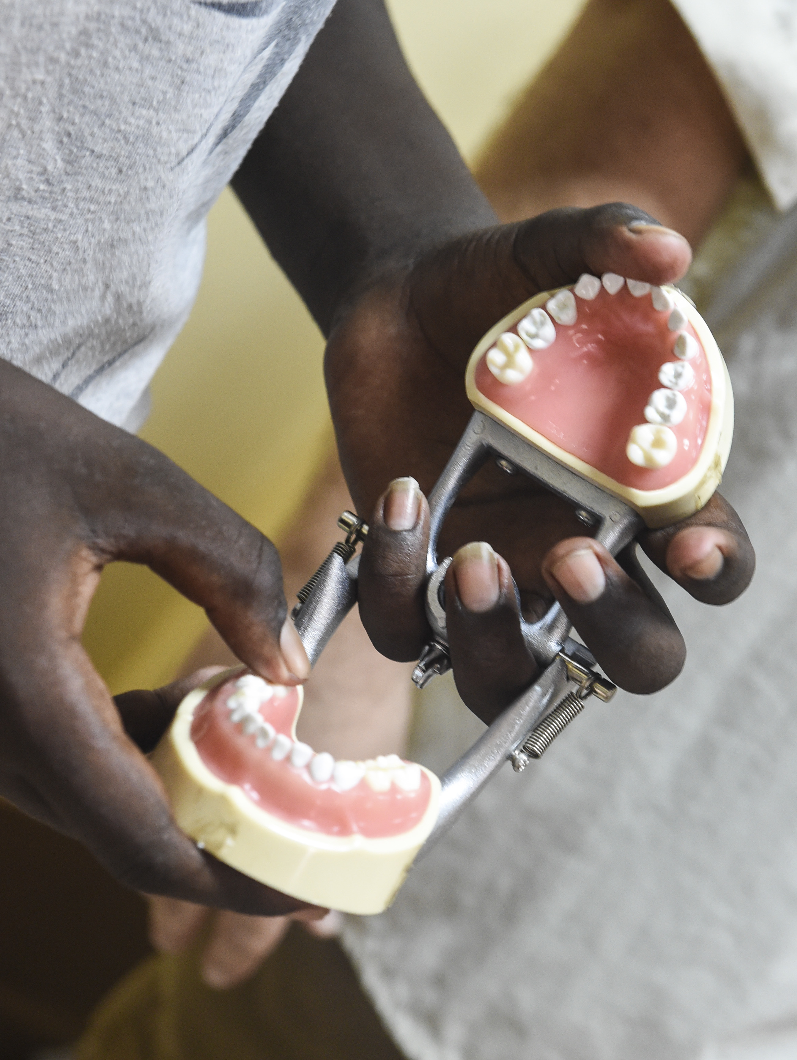 A child uses a dental typodont to count the number of teeth in an average 7-year-old mouth during an oral hygiene demonstration at Caritas Djibouti, a humanitarian organization in Djibouti City, Djibouti, Aug. 8, 2017. In support of the Combined Joint Task Force-Horn of Africa's efforts to promote regional security and stability, the 443rd Civil Affairs Battalion functional specialty team conducted multiple oral hygiene instruction classes for approximately 60 children from the local area. (U.S. Air Force photo by Staff Sgt. Eboni Prince)