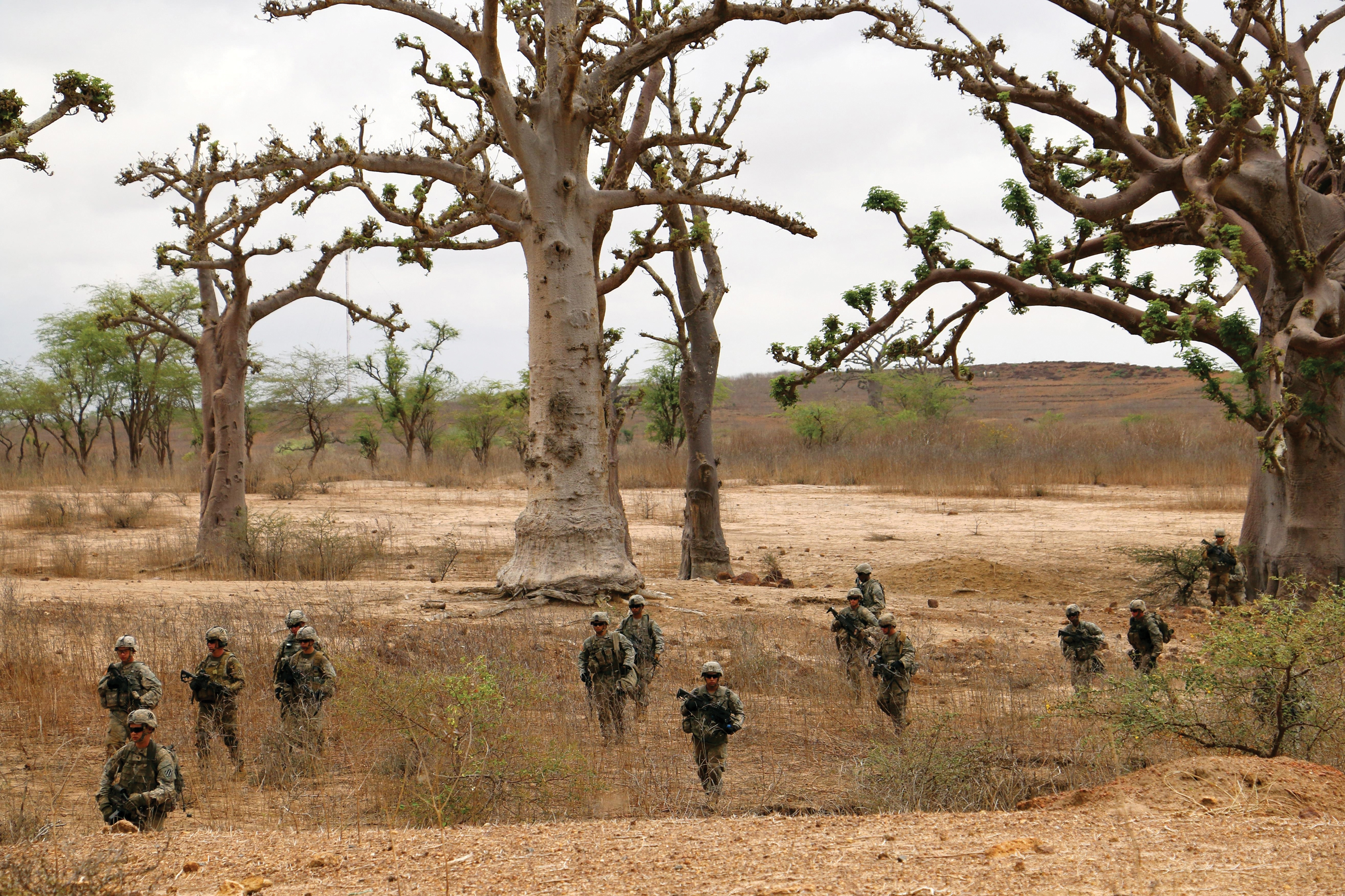 Readying for live-fire training in Senegal, soldiers with the 3rd Infantry Division move into position.