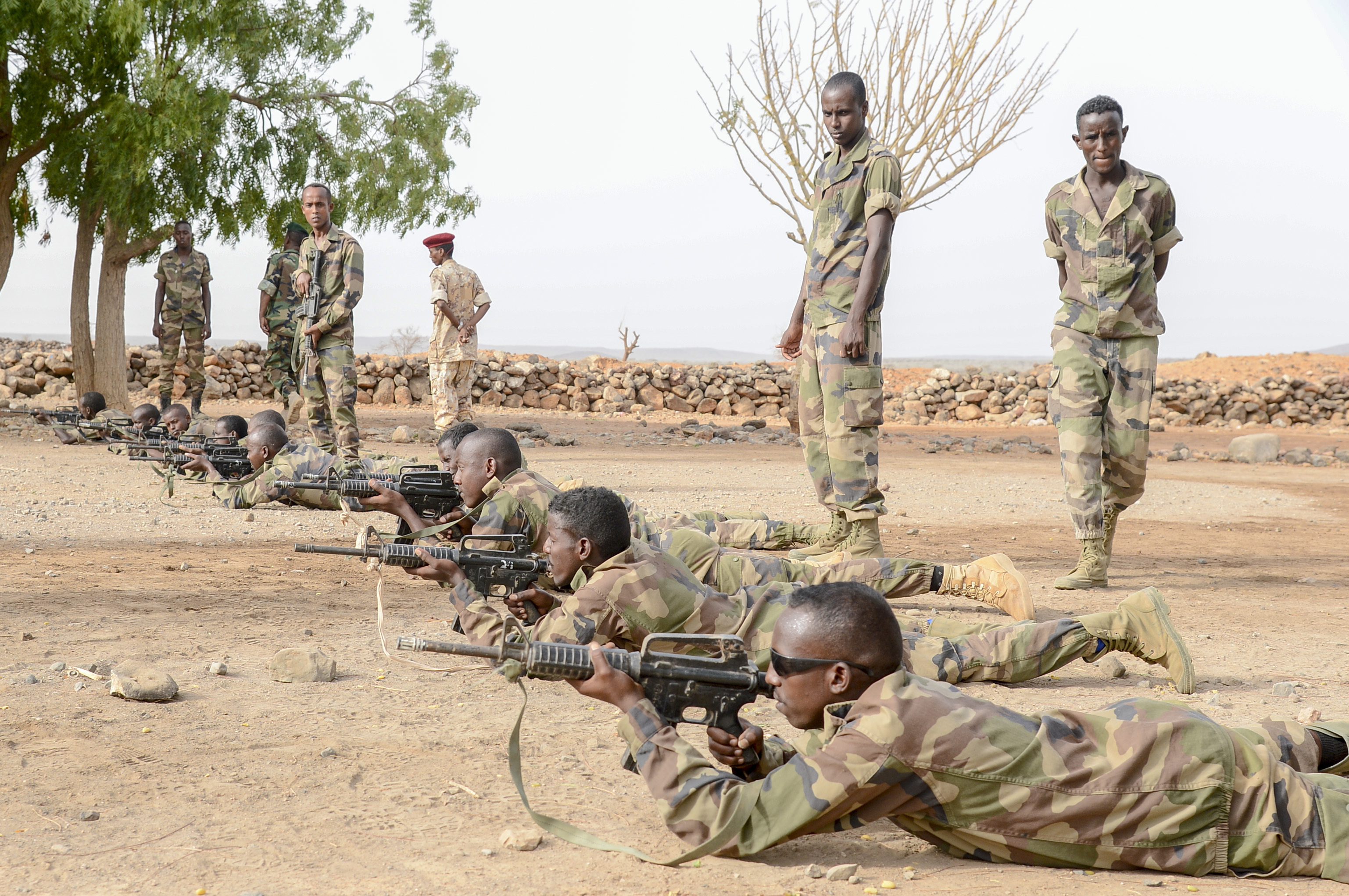 Non-commissioned officers with the Djiboutian Army's Rapid Intervention Battalion (RIB) instruct new recruits at a training site outside Djibouti City, July 3, 2018. The RIB is a U.S. Army trained unit that was formed to respond to crises and promote regional security and stability in East Africa. (U.S. Navy Photo by Mass Communication Specialist 2nd Class Timothy M. Ahearn)
